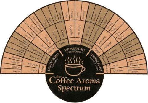 Coffee Flavor Spectrum