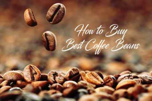 How to Buy Best Coffee Bean