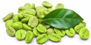 Green Coffee Bean Extract – Weight Loss Benefits