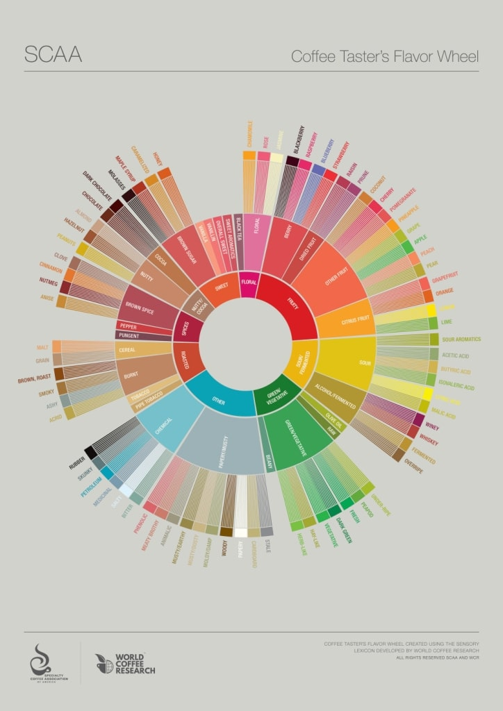 SCAA Flavor Wheel for Coffee Cupping