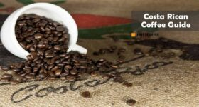 Costa Rican Coffee – History, Facts & Best Brands